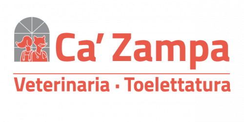 logo-ca-zampa-veterinaria-toelettatura.png