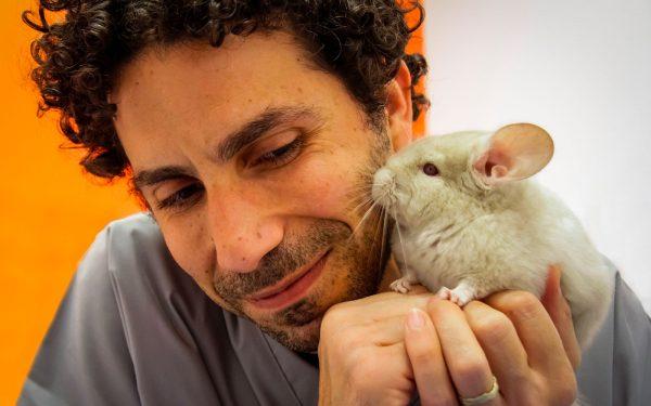 ca'zampa veterinario con chinchilla